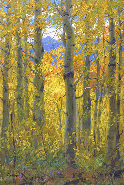 Charles Muench Enveloped in Aspens
